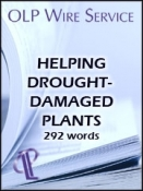 Helping Drought-Damaged Plants