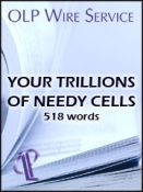 Your Trillions of Needy Cells